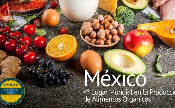 México 4º Lugar Mundial en la Producción de Alimentos Orgánicos